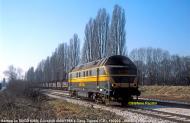 exsncbxxx-190203cavatigozzi2.jpg