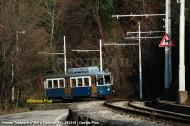 DSC_3510-800-galleria-natale-2013-datacorretta.jpg