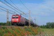DSCF7281.jpg
