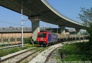 E474101DFG-TriesteBroletto.jpg