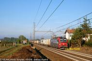 DSCF9810.jpg