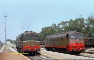 D.341.1007 e D.341.2002