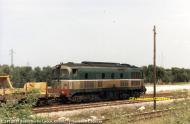 D341-2018Surbo-Lecce6-5-1982.jpg