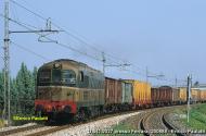 D3412027coFerrara_200688.jpg