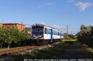M4c.352 e M4c.353
