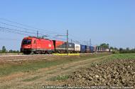 DSCF3040OK.jpg