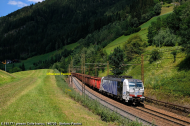 DSCF4530.jpg