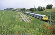 464xxx-150509copontegaleria copia.jpg