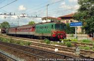 Agosto 1990 S.Rossore D345.1136.jpg