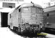 D.341.4001 Ansaldo